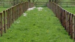 Legyen hasznos a kerítés